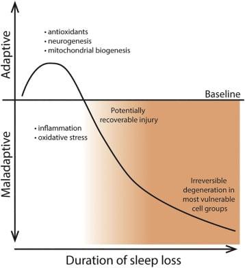 trouble du sommeil et neurodégénerescence en fonction du temps graphique