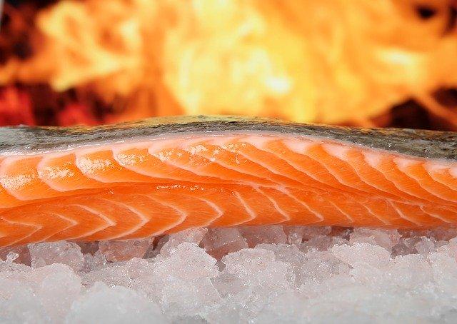 saumon omega-3 poisson sur glace santé alimentation