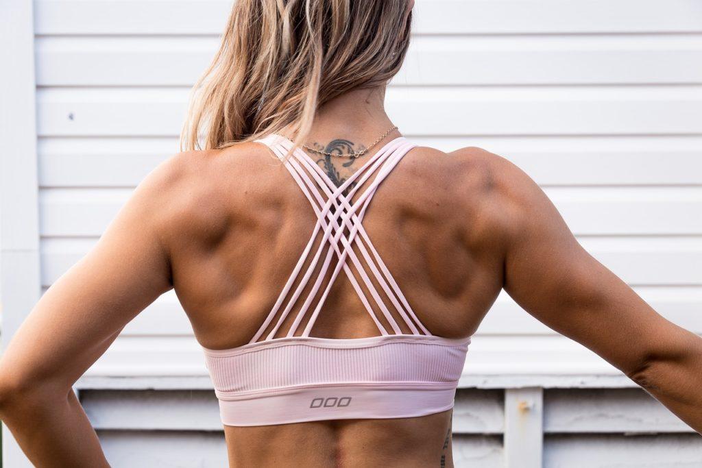 dos muscles femmes catéchines stoppant la fonte musculaire et favorisant la différenciation des cellules musculaires