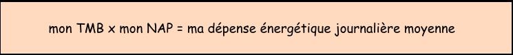 formule pour calculer la dépense énergétique journalière